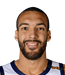 Rudy Gobert Player Stats 2021